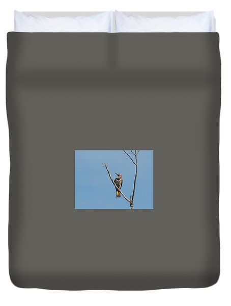 Yellow Shafted Flicker Front Duvet Cover
