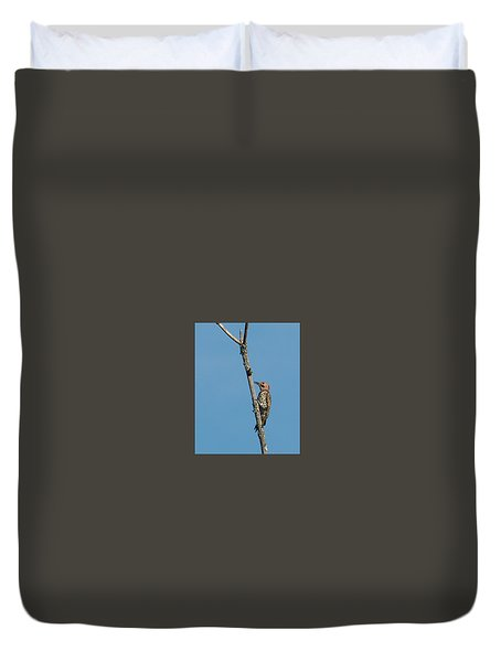 Yellow Shafted Flicker Duvet Cover