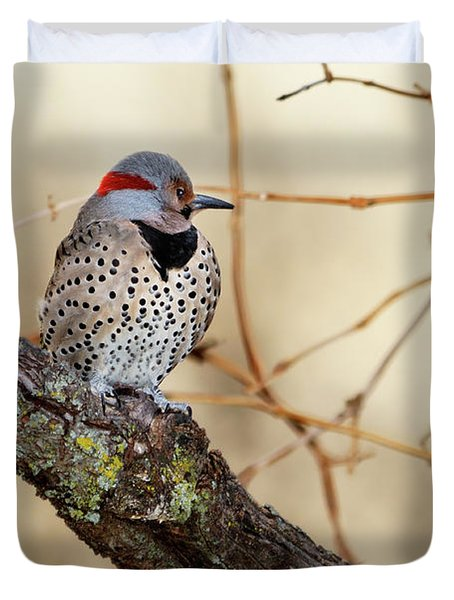 Yellow-shafted Northern Flicker Duvet Cover