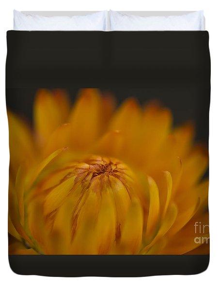 Yellow Strawflower Blossom Close-up Duvet Cover
