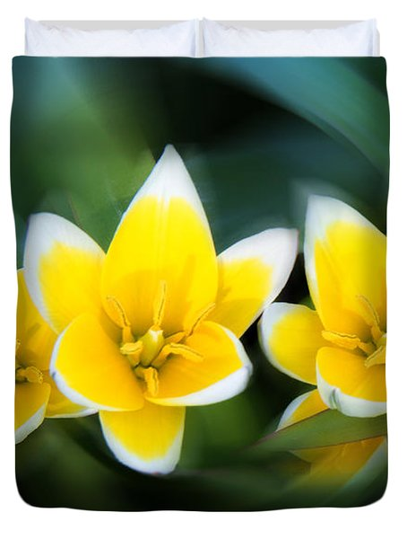 Yellow Trio Duvet Cover