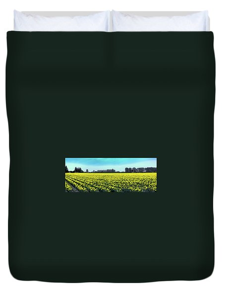 Yellow Tulip Fields Duvet Cover by David Patterson