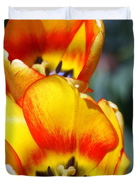 Yellow Tulip Duvet Cover by Marty Koch