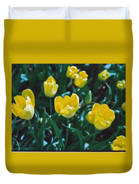 Duvet Cover featuring the photograph Yellow Tulips--film Image by Matthew Bamberg