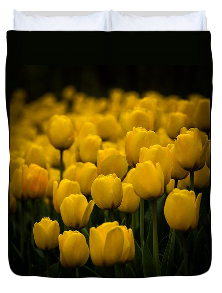 Duvet Cover featuring the photograph Yellow Tulips by Jay Stockhaus
