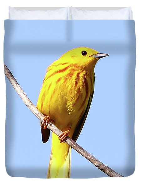 Yellow Warbler #1 Duvet Cover by Marle Nopardi