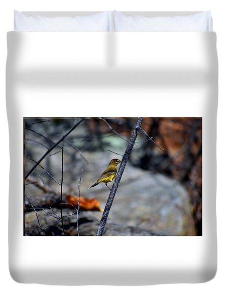 Yellow Warbler 2 Duvet Cover