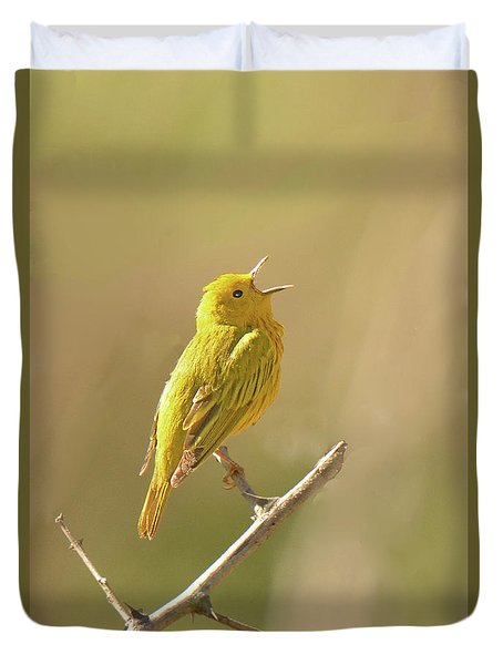 Yellow Warbler Song Duvet Cover