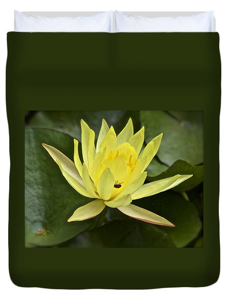 Yellow Waterlily With A Visiting Insect Duvet Cover