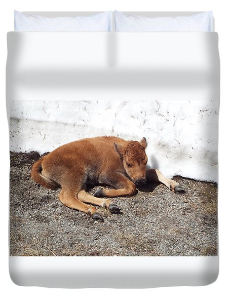 Yellowstone Bison Calf  Duvet Cover