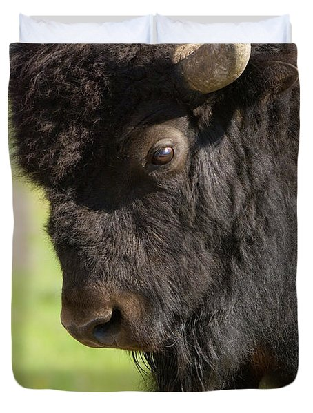 Yellowstone Bison Portrait Duvet Cover by Sandra Bronstein