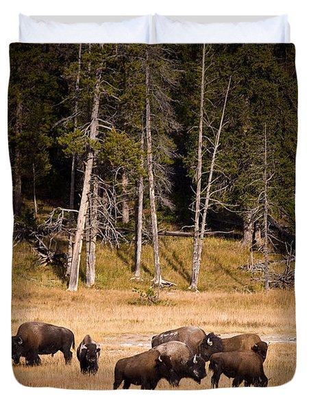 Yellowstone Bison Duvet Cover by Steve Gadomski