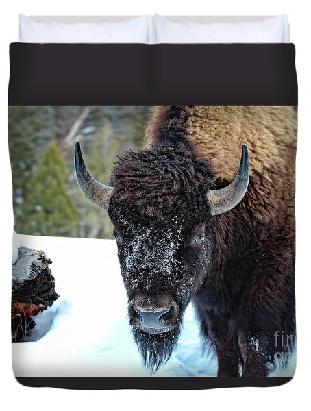 Yellowstone Buffalo Stare-down Duvet Cover
