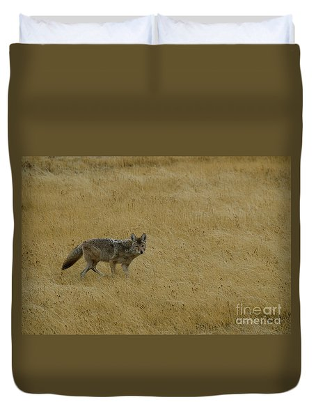 Duvet Cover featuring the photograph Yellowstone Coyote by Sue Smith