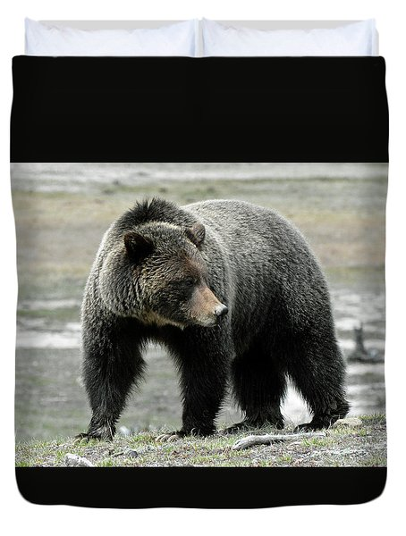 Duvet Cover featuring the photograph Yellowstone Grizzly A Pondering by Bruce Gourley