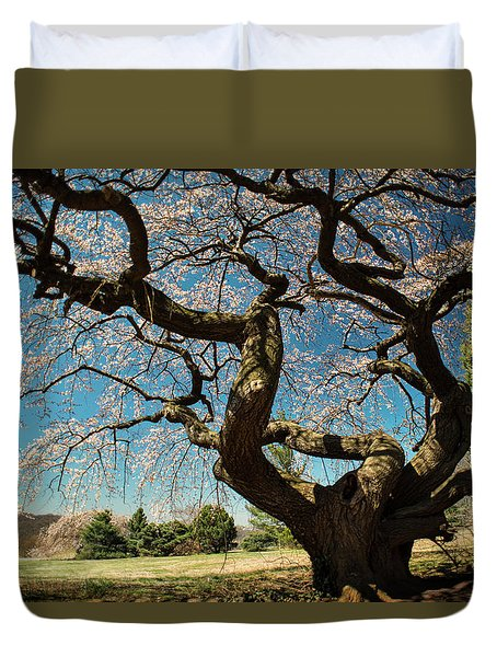 Yoshino Cherry Duvet Cover