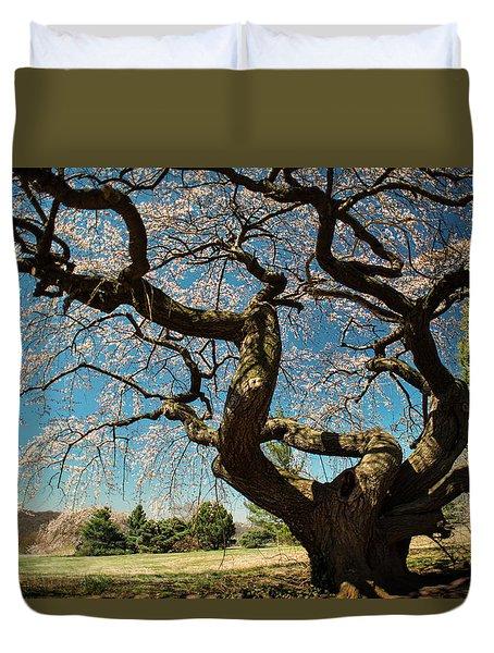 Yoshino Cherry Duvet Cover