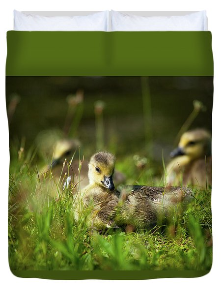 Duvet Cover featuring the photograph Young And Adorable by Karol Livote