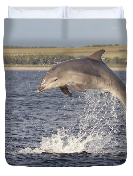 Young Bottlenose Dolphin - Scotland #13 Duvet Cover