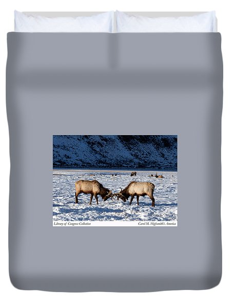 Young Bull Elk In Jackson  Hole In Wyoming Duvet Cover by Carol M Highsmith