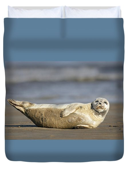 Young Common Seal Sleeping On The Beach Duvet Cover