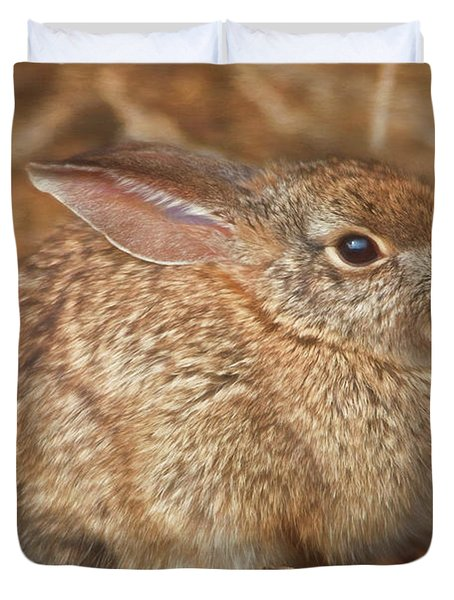 Young Cottontail In The Morning Duvet Cover