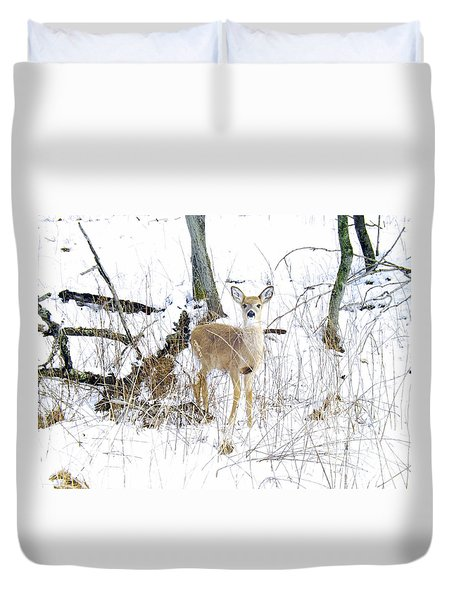 Young Doe And Spring Snow Duvet Cover