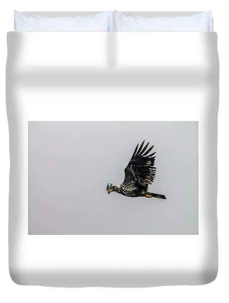 Young Eagle In Flight 07 Duvet Cover by Timothy Latta