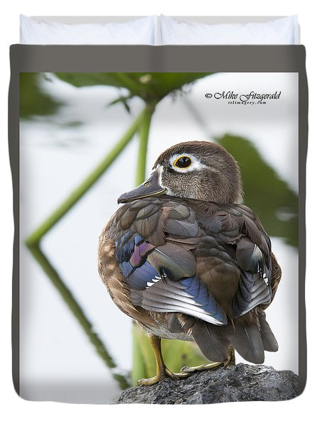 Young Female Wood Duck Duvet Cover