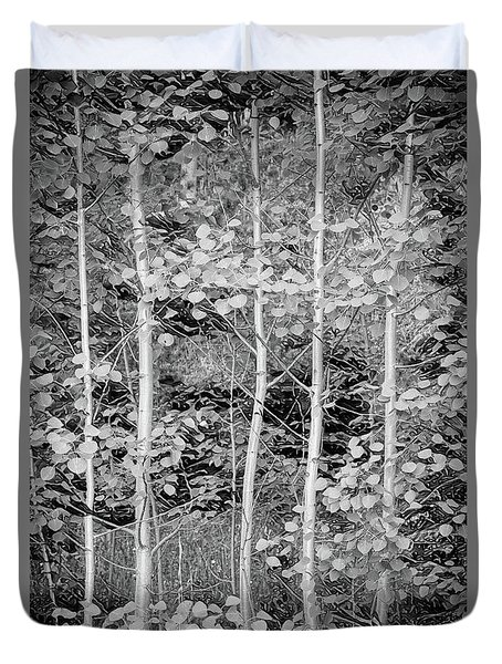 Duvet Cover featuring the photograph Young Forest by James BO Insogna