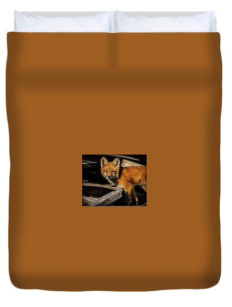 Young Fox In The Wood Duvet Cover