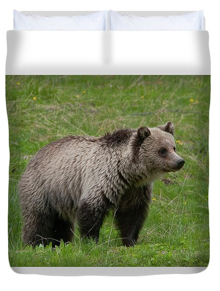 Young Grizzly Duvet Cover