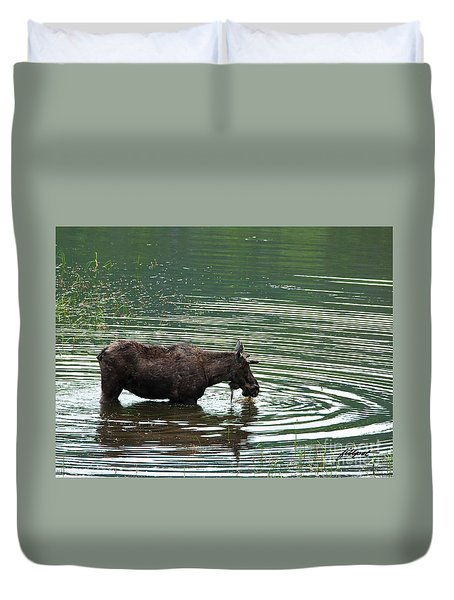 Young Moose In Pond Duvet Cover