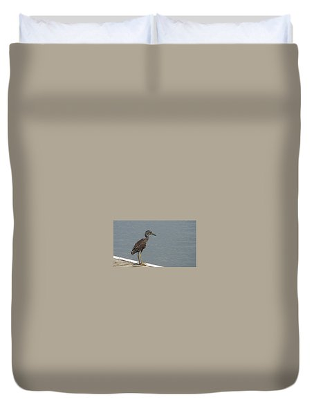 Young Night Heron Duvet Cover