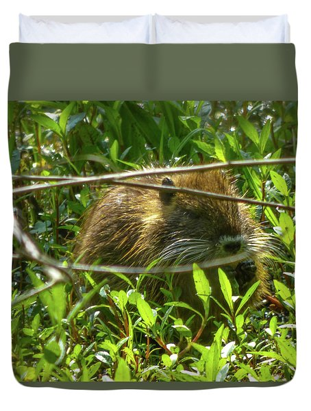 Young Nutria In Love Duvet Cover