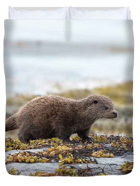 Young Otter Duvet Cover