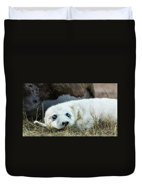 Young Pup Duvet Cover