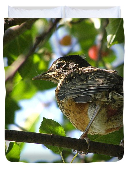 Duvet Cover featuring the photograph Young Robin by Angie Rea