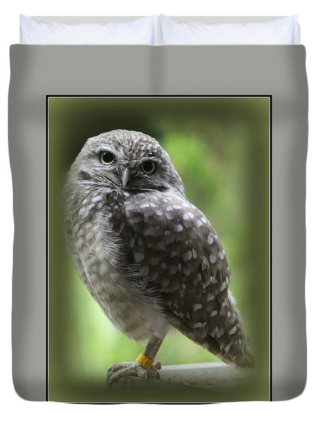 Young Snowy Owl Duvet Cover
