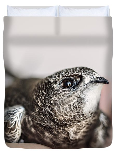 Young Swift Duvet Cover