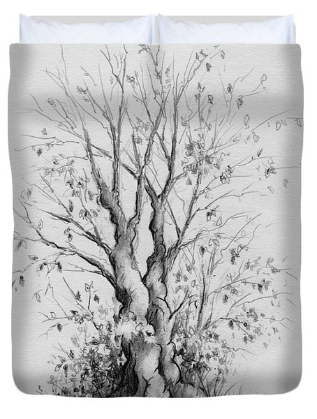 Young Tree Duvet Cover by Rachel Christine Nowicki