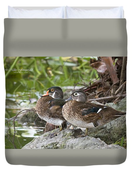 Young Wood Duck Pair Duvet Cover