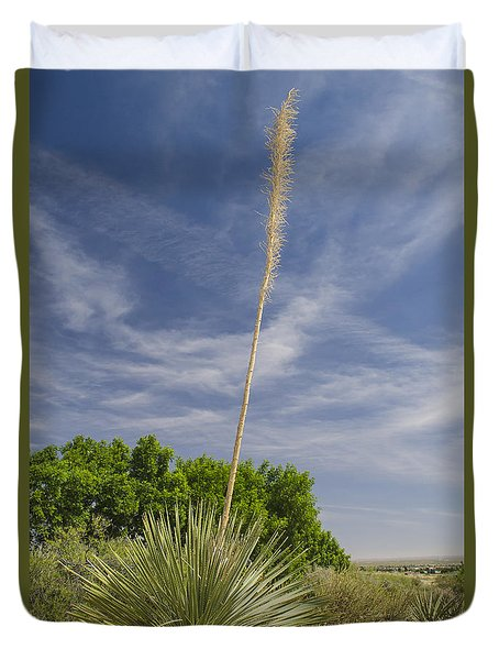 Yucca And Blue Sky Duvet Cover