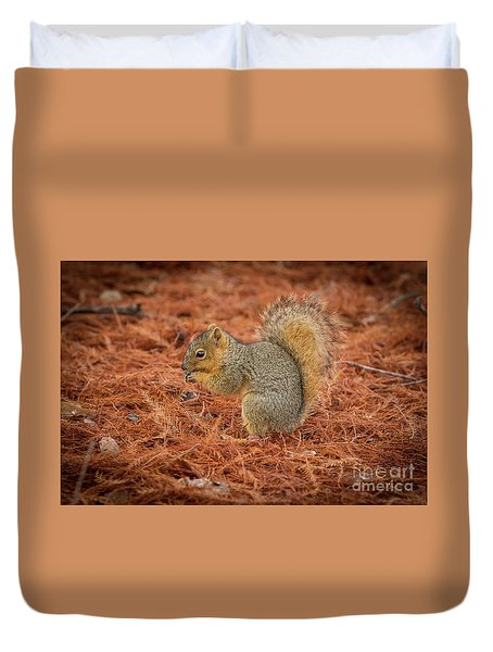 Yum Yum Nuts Wildlife Photography By Kaylyn Franks     Duvet Cover