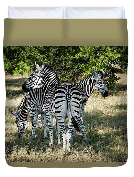 Three Zebras Duvet Cover