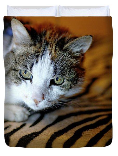 Zebra Cat Duvet Cover