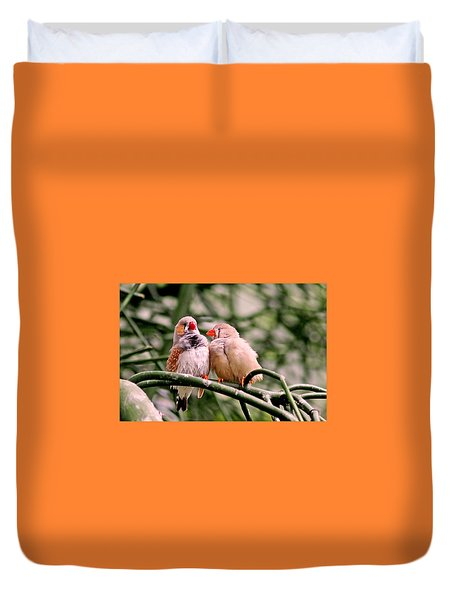 Duvet Cover featuring the photograph Zebra Finch Colloquy by Rona Black