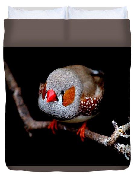 Zebra Finch Duvet Cover