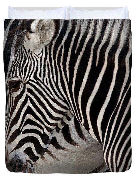Zebra Head Duvet Cover by Carlos Caetano