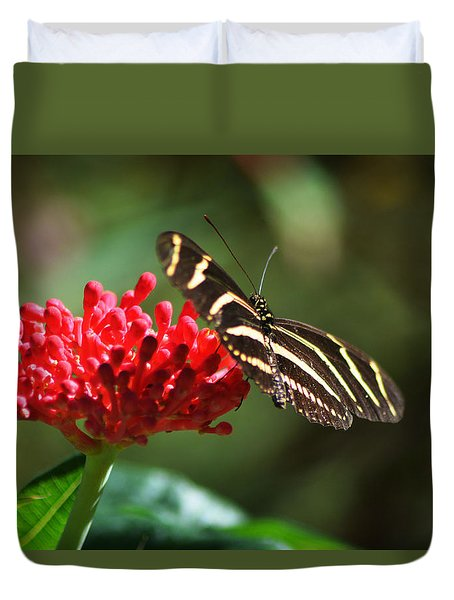 Zebra Heliconia Butterfly Duvet Cover